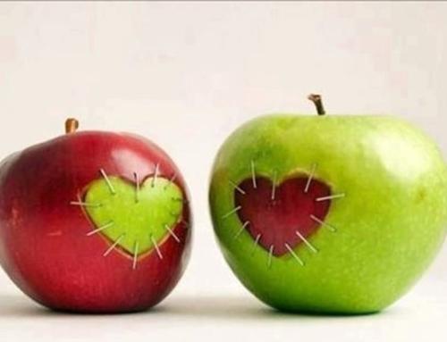 Как стать идеальной второй половинкой?
